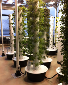 Vertical Aeroponic Towers