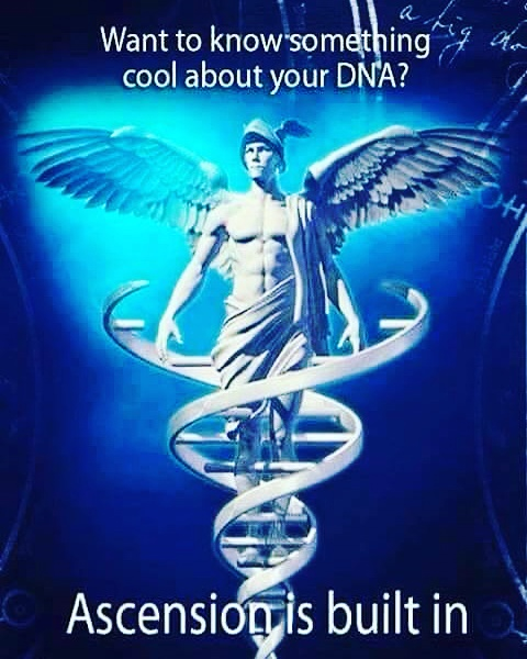 dna-ascension