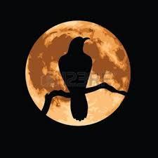 crow-moon4
